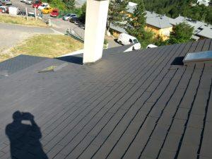 charpentier-couvreur-peinture-de-toiture-da-silva-carlos-lozre-mende-nettoyage-demoussage-de-toit-couverture