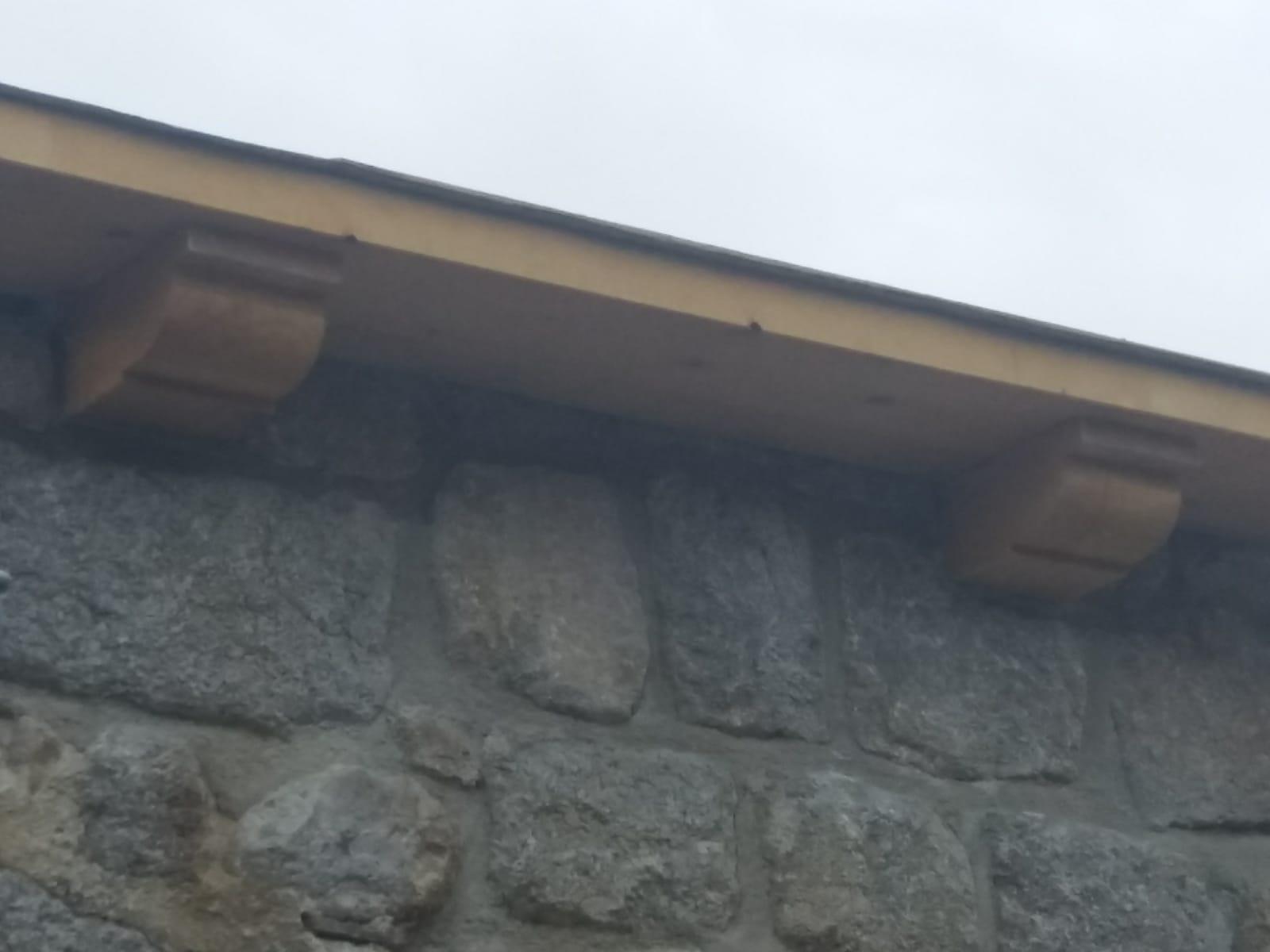 Corbeau en bois