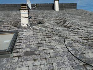 charpentier-couvreur-nettoyage-demoussage-de-toit-nettoyage-demoussage-de-toit-couverture